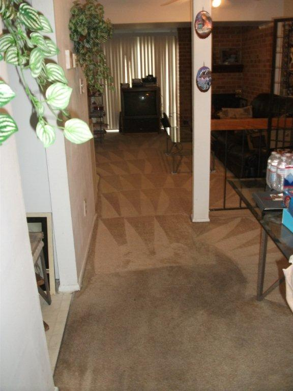carpet cleaning before and after virginia beach